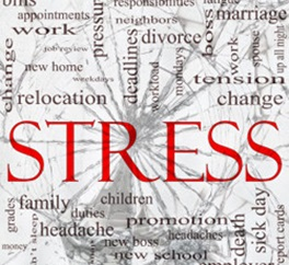 the major causes of student stress in colleges College students battle to handle stress and depression pressure to do well and assignments add to stress and cause anxiety.