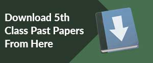 Download 5th Class Past Papers From Here