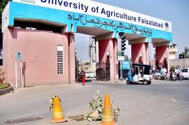 University of Agriculture Faisalabad begins admission 2014-15